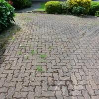 brick driveway before pressure washing