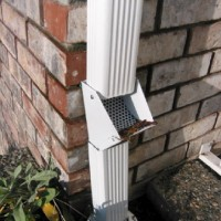 ground level debris catchers that we install into your downpipes