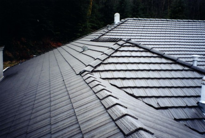 how to clean moss off roof tiles