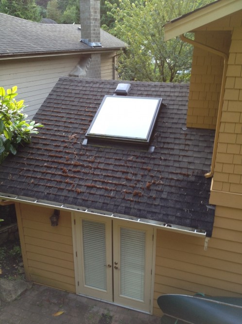 Roof Cleaning Roof Moss Control Treatments Vancouver A