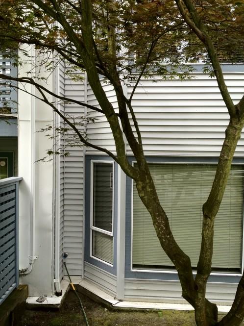 Strata Building Washing Amp Window Washing North Vancouver