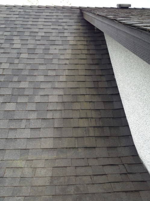 Vancouver Roof Cleaning A Glass Act Roof Moss Removal