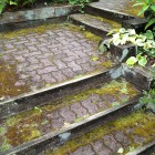 Mossy pavers and railway ties before power washing