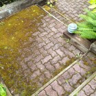 Very mossy paving stone stairs and landing before power washing